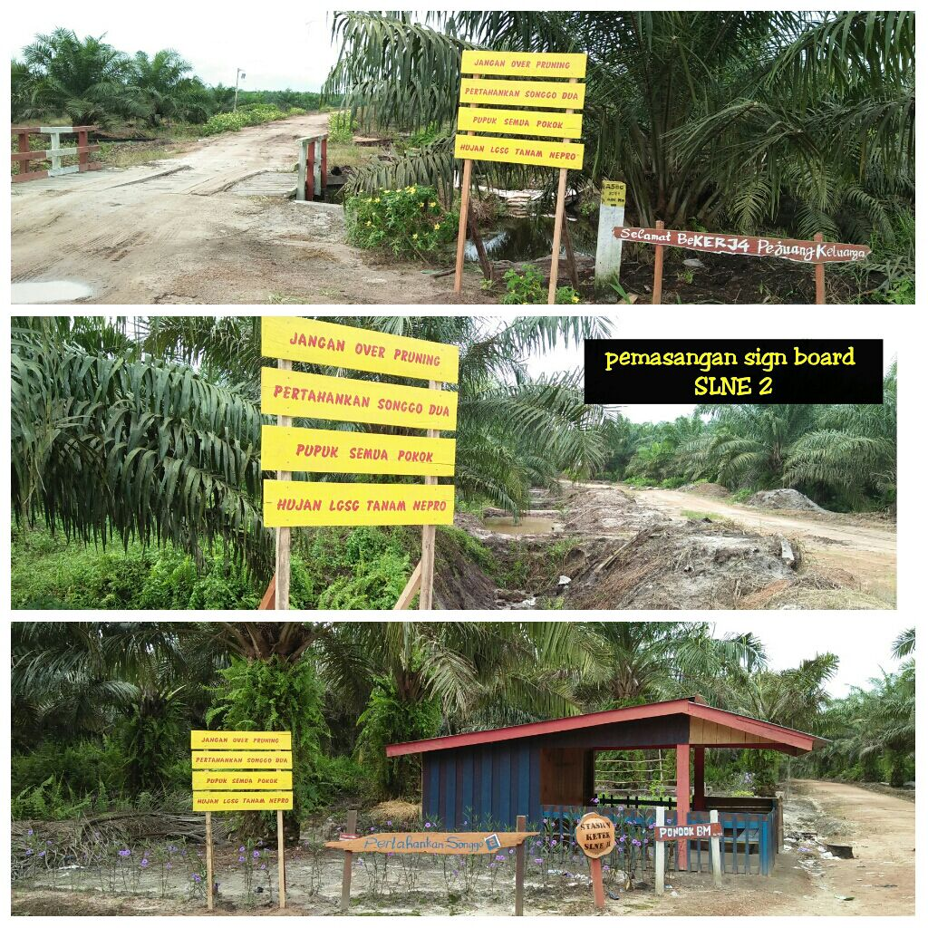 Pemasangan Sign Board di SLNE